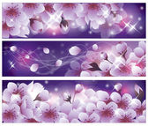 Spring banners with Sakura flowers. vector illustration — Stock Vector