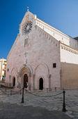 Cathedral. Ruvo di Puglia. Apulia. — Stock Photo