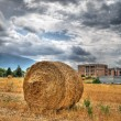 Rolling haystack in countryside. — Stock Photo #4327046