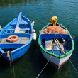 Boats. — Stock Photo #4538049