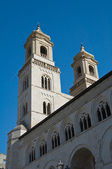 St. Maria Assunta Cathedral. Altamura. Apulia. — Stock Photo