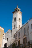 Collegiate church St. Maria della Colonna. Rutigliano. Apulia. — 图库照片