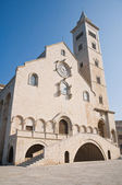 Cathedral. Trani. Apulia. — Stock Photo