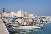 Panoramic view of Trani seaport. Apulia. — Stok fotoğraf