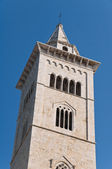 Catedral do campanário. trani. puglia. — Foto Stock