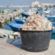 Stock Photo: View of Trani seaport. Apulia.