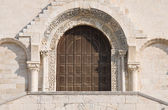 Cathedral portal. Trani. Apulia. — Stock Photo