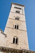 Cattedrale campanile a vela. trani. puglia. — Foto Stock