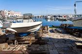 谢列海港的全景视图。阿普利亚. — 图库照片