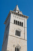 Belltower Cathedral. Trani. Apulia. — Stock Photo