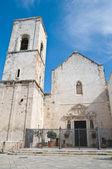 Mother Church. Polignano a Mare. Apulia. — Stock Photo