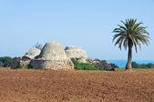 Trulli in countryside. Apulia. — Stock Photo