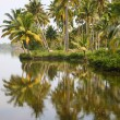 Stock Photo: Back Waters in Kerala