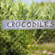 Crocodiles signboard - Stock Photo