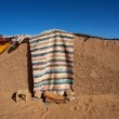 Stock Photo: Traditional berber mud house