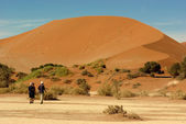 Desert of Sossusvlei in Namibia — Stock Photo