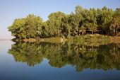 Reflecties in de rivier — Stockfoto