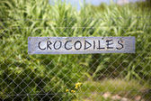Crocodiles signboard — Stock Photo