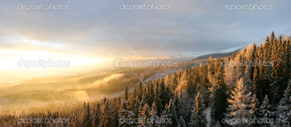 Landscapes and snow in slovakia — Stock Photo #5113378