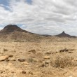 Surreal panorama of the Kaokoland game reserve in Namibia — Stock Photo