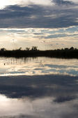 Delta del okavango en botswana — Foto de Stock