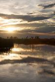 Okavango delta in botswana — Stock Photo