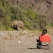 Woman observing elephant — Stock Photo