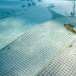 Old swimming pool — Stock Photo #5203504