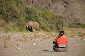 Woman observing elephant — Stock Photo