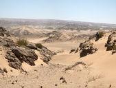 The Skeleton Coast Desert — Stock Photo