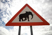 Sign road with Animal warning — Stock Photo
