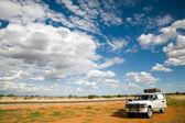 тропик козерога — Стоковое фото