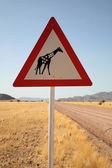 Danger Giraffes Road Sign — Stock Photo