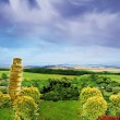 The Pisa Tower in the countryside — Stock Photo