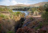 Epupa falls — Stock fotografie