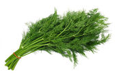 Bunch dill — Stock Photo