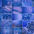 Frost pattern. — Stock Photo