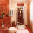 Stock Photo: Modern shower cabin and bidet