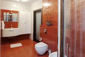 Modern shower cabin and bidet — Stock Photo