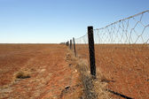 Australian outback Dingo fence — Stock Photo