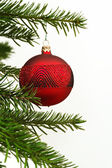 Hanging Christmas ball — Stock Photo