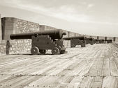 Row of cannons — Stock Photo