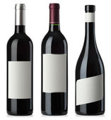 Red wine blank bottles with labels — Stock Photo