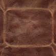 Brown leather — Stock Photo #4892810