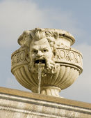 Face on a Water Fountain — Stock Photo