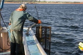 Fisherman at work — Stock Photo