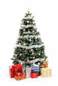 Christmas tree on white with presents — Foto de Stock