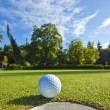 Golf on a beautiful day - Stock Photo