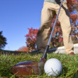 Fairway wood and fall — Stock Photo
