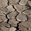Stock Photo: Cracked lifeless soil